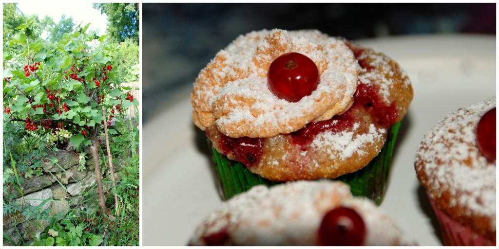 Johannisbeer- Cupcakes mit Baiserhaube (1)